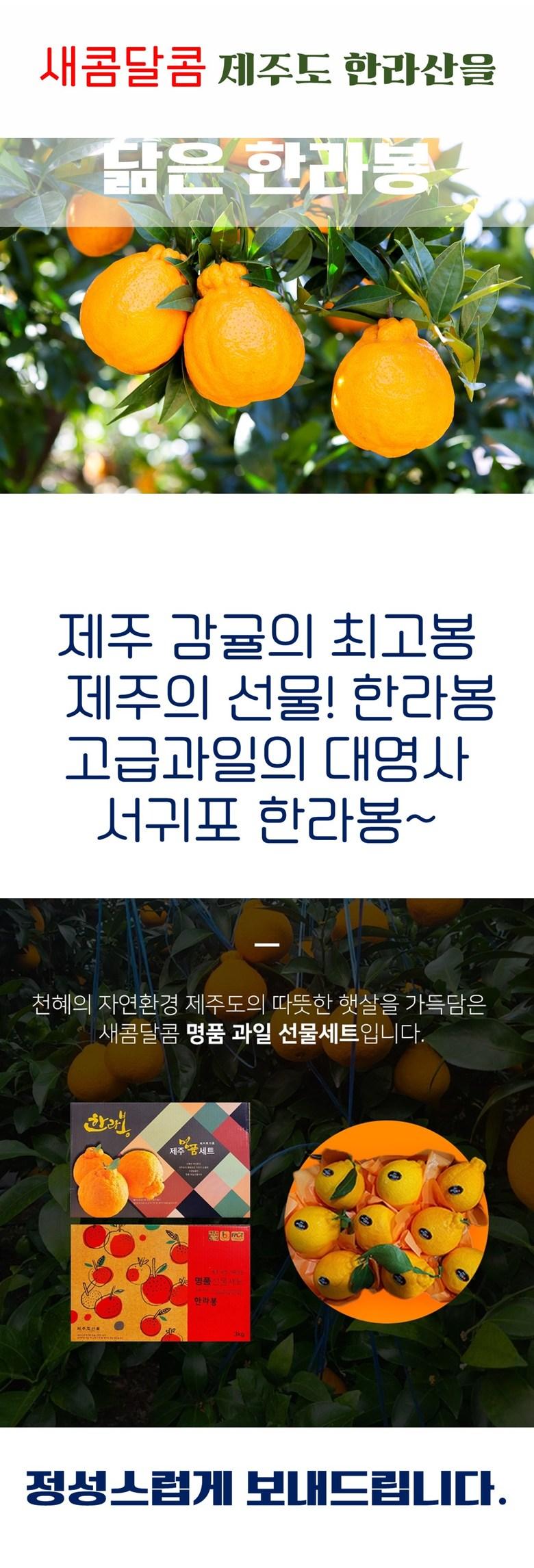 f11239009c8eab4f7468a0c7f2e2561e_1611827301_5161.jpg